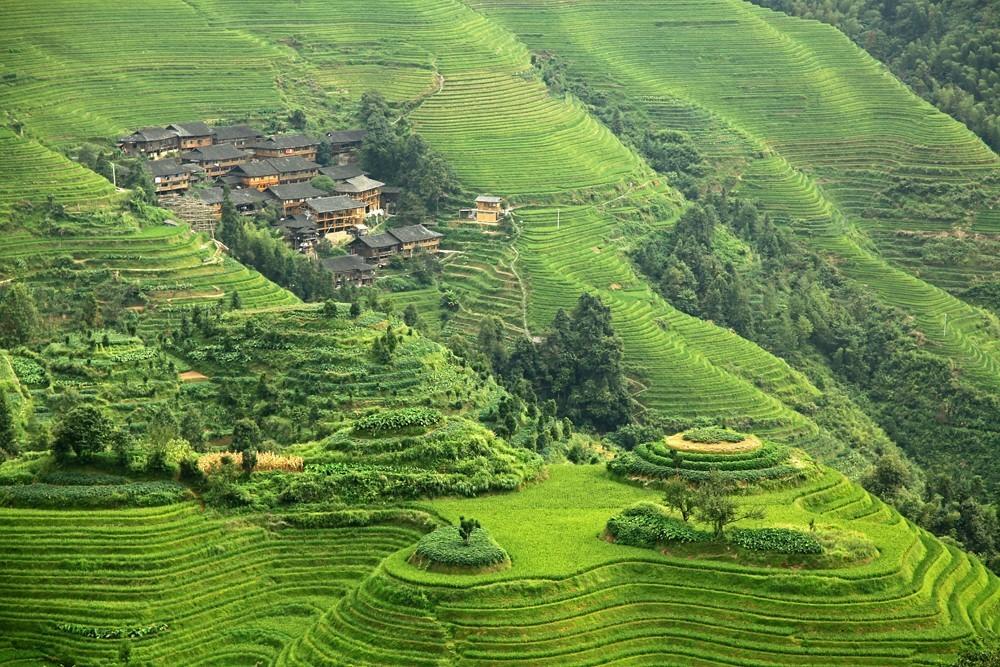 Террасы Лонгджи, Пиньян, Китай