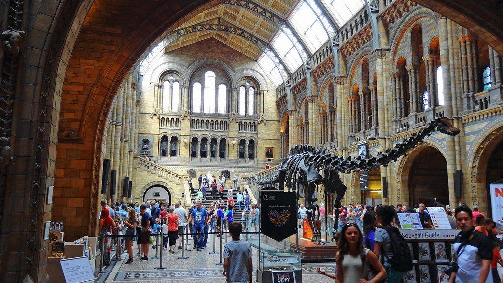 Музей естествознания, Лондон