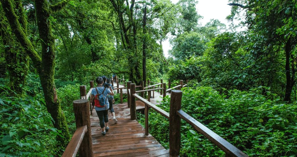 Национальный парк Дой Интханон, Таиланд