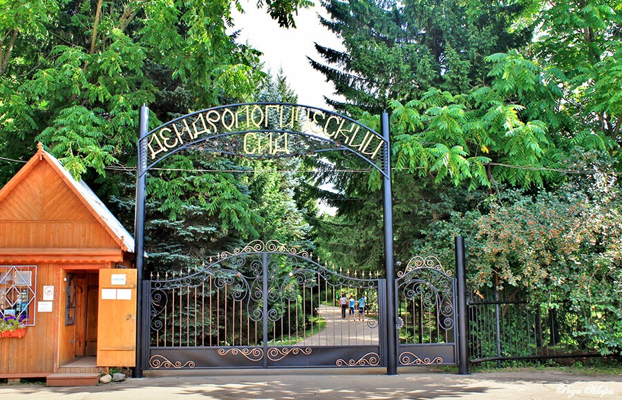 Дендрологический сад, Переславль-Залесский